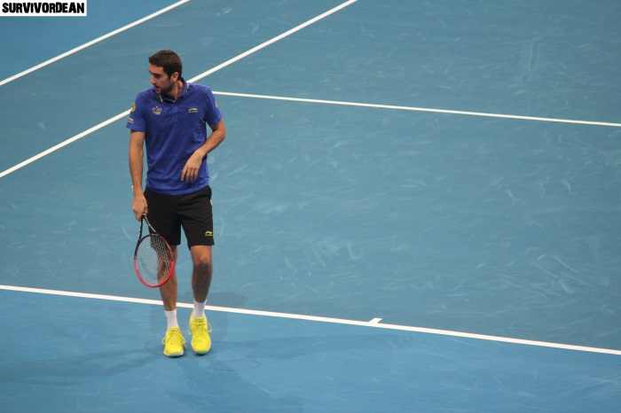 Maric Cilic in action